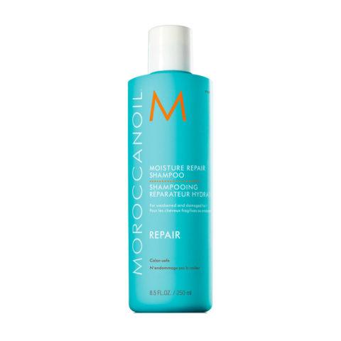 Moroccanoil Moisture repair shampoo 250ml - shampoo ristrutturante idratante