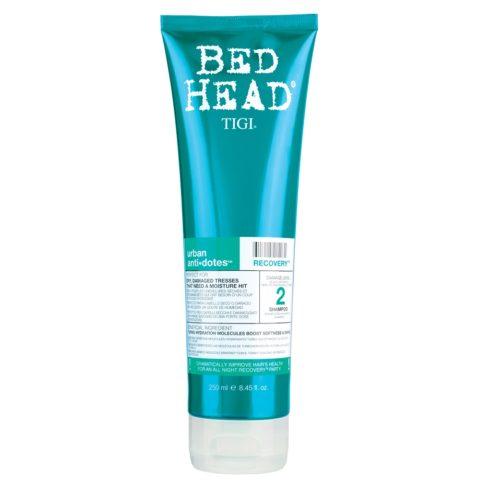 Tigi Urban Antidotes Recovery Shampoo 250ml - shampoo riparatore livello 2