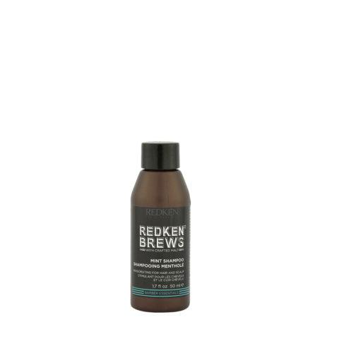 Redken Brews Man Mint Shampoo 50ml - shampoo alla menta energizzante