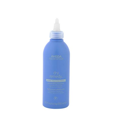 Aveda Dry remedy Penetrating moisture 250ml - trattamento super idratante rapido