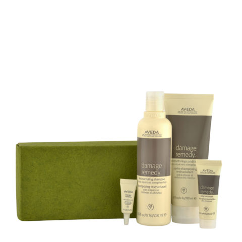 Aveda Damage Remedy Kit Stronger hair