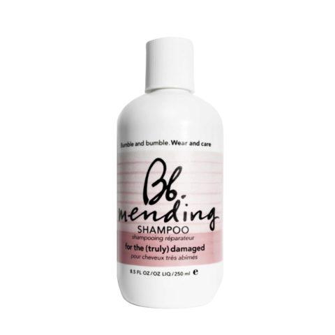 Bumble And Bumble Mending Shampoo capelli danneggiati 250ml