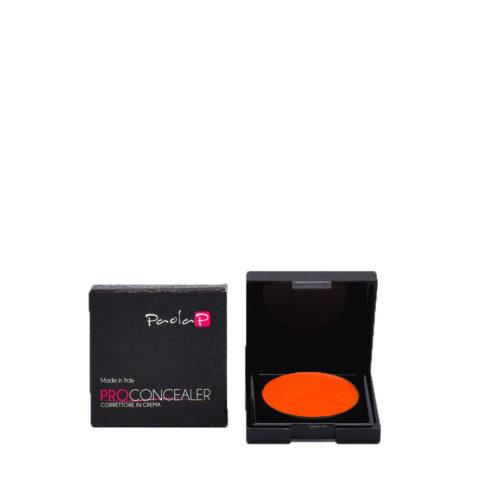 Paola P 09 Pro Concealer Correttore in Crema 3gr