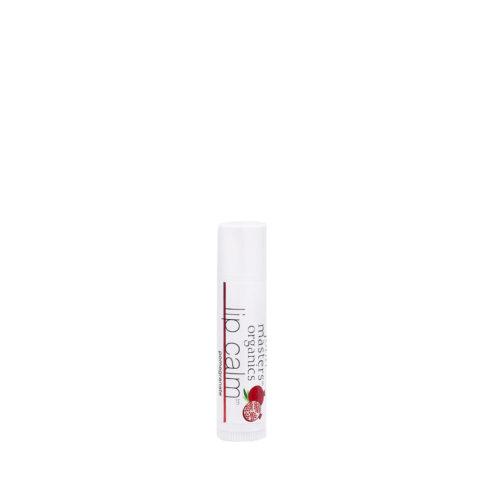 John Masters Organics Lip Calm Pomegranate Balsamo Labbra Biologico 4gr