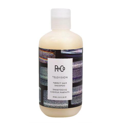 R + Co Television Shampoo per tutti i tipi di Capelli 241ml