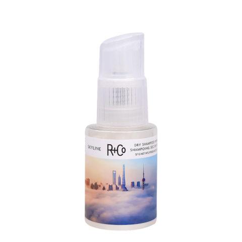 R + Co Skyline Dry Shampoo Powder Polvere Volumizzante 57gr